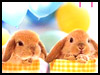 Eggstra fun - Holiday Specials ecards - Birthday Greeting Cards